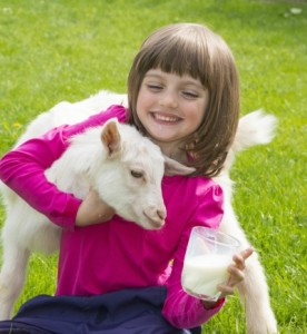 Future goat breeder!