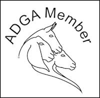 Member ADGA